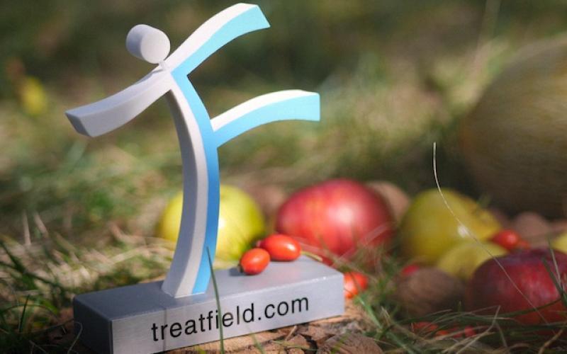 Тритфилд, ягоды, психотерапия