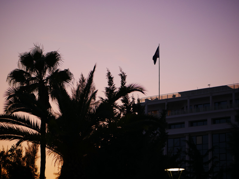 Закат, пальма
